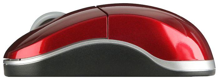 Купить Мышь Speed-Link SNAPPY Wireless Mouse Nano SL-6152-SRD-01 Red USB (SL-6152-SRD-01) фото 2