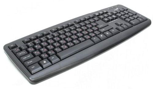 Купить Клавиатура Genius KB-110X Black PS/2 (KB-110X Black PS/2) фото 2