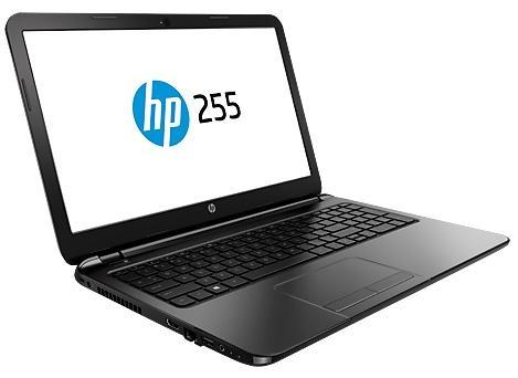 Купить Ноутбук HP 255 G6 (1WY10EA) фото 2