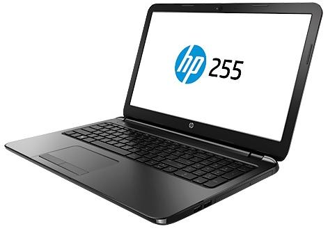 Купить Ноутбук HP 255 G6 (1WY10EA) фото 3