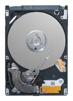 Жесткий диск Seagate ST320LM001