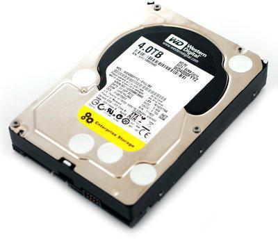 Жесткий диск Western Digital WD4002FYYZ