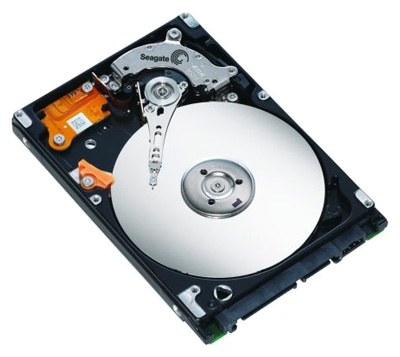 Жесткий диск Seagate ST980811AS