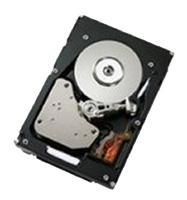 Жесткий диск IBM 40K1024