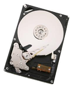 Жесткий диск Hitachi HUA721010KLA330