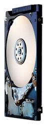 Жесткий диск Hitachi HTS543232A7A384