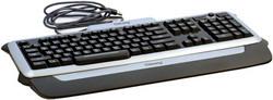 Клавиатура Chicony KUP-0603-SB Silver-Black USB