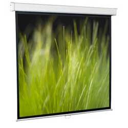 Проекционный экран ScreenMedia Goldview 206х274 MW