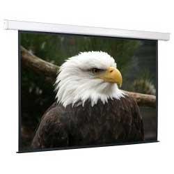 Проекционный экран ScreenMedia Champion 180x180 MW