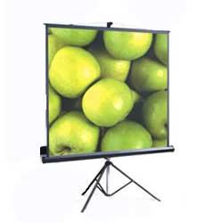 Проекционный экран ScreenMedia Apollo T 150x150 MW