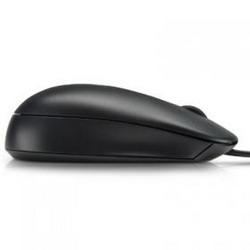 Мышь HP QY777AA Optical Scroll Mouse Black USB QY777AA