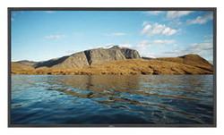 Телевизор NEC MultiSync LCD4620