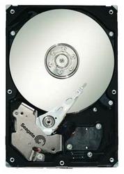 Жесткий диск Seagate ST31000640SS