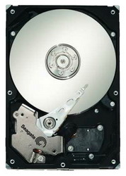 Жесткий диск Seagate ST31000340NS