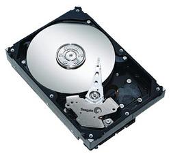Жесткий диск Seagate ST3250310AS