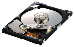Жесткий диск Samsung HM250JI